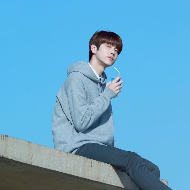 Nhóm nhạc em trai ngậm thìa vàng của BTS: Đẹp trai lạ, thành viên lai quá nổi nhưng ảnh quá khứ mới gây bất ngờ - Ảnh 1.