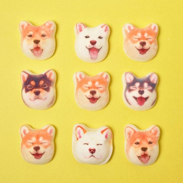 Góc dành cho boss yêu cún: viên kẹo hình chó Shiba mặt hớn đang khiến nhiều người mê mẩn - Ảnh 3.
