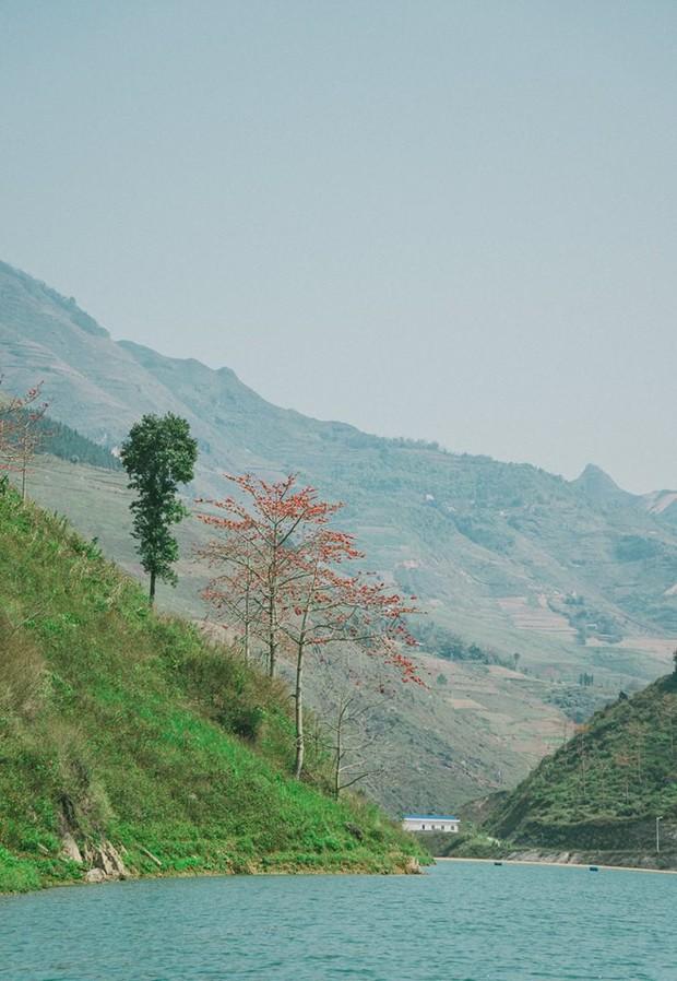 Bí kíp săn hoa ở Hà Giang chỉ mất 2 ngày và 1,5 triệu đồng: Đảm bảo vẫn vui hết nấc và đi được đủ nơi! - Ảnh 10.