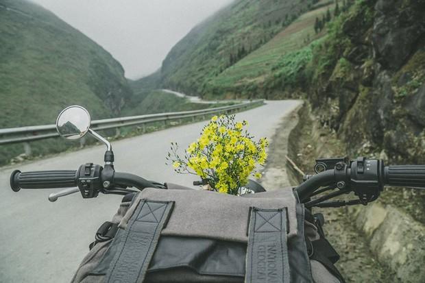 Bí kíp săn hoa ở Hà Giang chỉ mất 2 ngày và 1,5 triệu đồng: Đảm bảo vẫn vui hết nấc và đi được đủ nơi! - Ảnh 11.