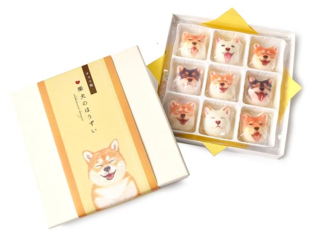 Góc dành cho boss yêu cún: viên kẹo hình chó Shiba mặt hớn đang khiến nhiều người mê mẩn - Ảnh 7.