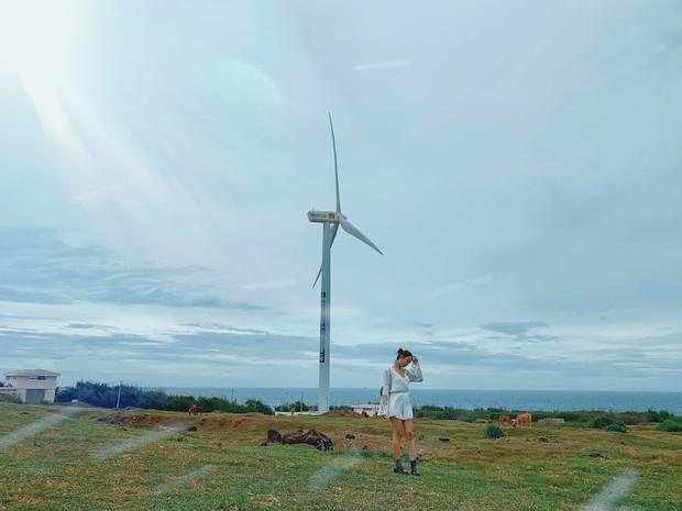 Lưu lại địa chỉ 4 cánh đồng quạt gió đẹp nhất Việt Nam để còn đi săn ảnh đẹp hè này! - Ảnh 9.
