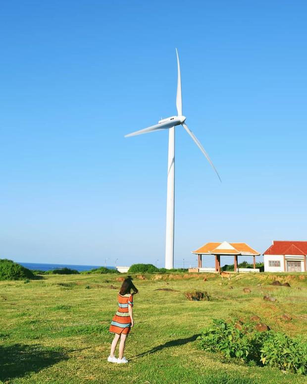 Lưu lại địa chỉ 4 cánh đồng quạt gió đẹp nhất Việt Nam để còn đi săn ảnh đẹp hè này! - Ảnh 11.