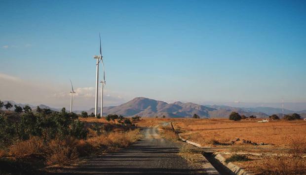 Lưu lại địa chỉ 4 cánh đồng quạt gió đẹp nhất Việt Nam để còn đi săn ảnh đẹp hè này! - Ảnh 5.
