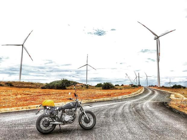 Lưu lại địa chỉ 4 cánh đồng quạt gió đẹp nhất Việt Nam để còn đi săn ảnh đẹp hè này! - Ảnh 7.
