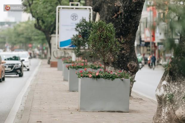 Clip bức xúc: Nhiều người dừng xe giữa đường phố Hà Nội mót hoa trang trí, lãnh đạo Công ty Công viên cây xanh lên tiếng - Ảnh 10.