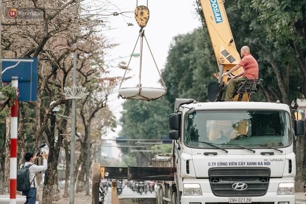 Clip bức xúc: Nhiều người dừng xe giữa đường phố Hà Nội mót hoa trang trí, lãnh đạo Công ty Công viên cây xanh lên tiếng - Ảnh 8.