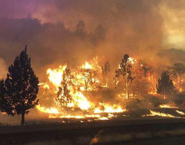 Còn nhớ vụ cháy rừng như tận thế tại California năm ngoái chứ? Khoa học tin rằng từ nay nó có thể xảy ra mỗi năm - Ảnh 1.