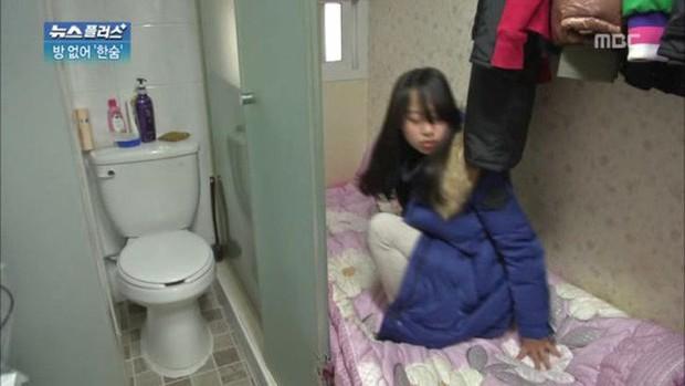 Đột nhập Goshiwon - phòng trọ hộp diêm dành cho sinh viên Hàn Quốc: Chỉ rộng 3m2, toilet bên cạnh giường ngủ - Ảnh 4.