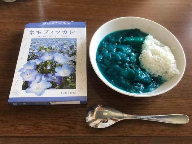 Món cà ri xanh độc đáo ở Nhật Bản lấy ý tưởng từ cánh đồng hoa đẹp đến ngỡ ngàng - Ảnh 5.