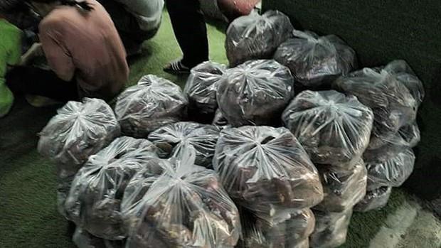 """Sinh viên thực phẩm """"giải cứu"""" hơn 10 tấn khoai lang - Ảnh 1."""