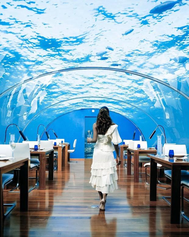 Loá mắt với khách sạn triệu đô dưới đáy biển Ấn Độ Dương mà chỉ giới siêu giàu mới đủ tiền thuê - Ảnh 5.