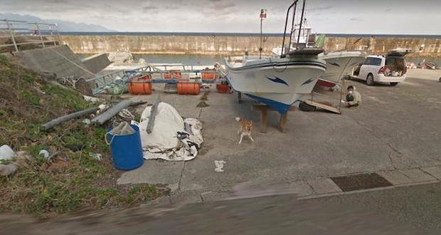 Chú chó Nhật hủy hoại mọi khung hình của Google Street View vì đuổi theo camera - Ảnh 3.