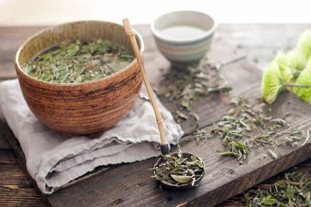 Uống trà trắng đem lại quá nhiều công dụng tuyệt vời cho sức khỏe! - Ảnh 5.