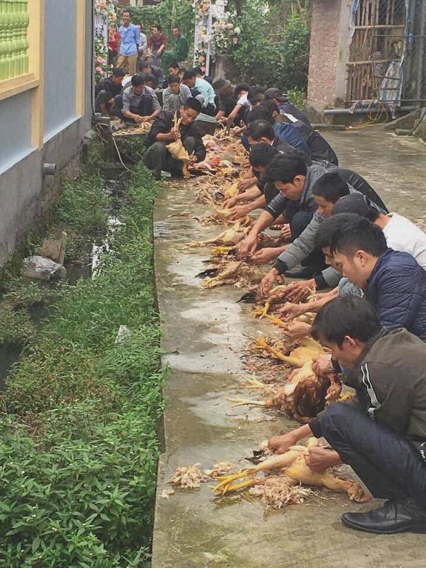 Hình ảnh ấn tượng hậu 8/3: Hàng chục nam thanh niên tham gia đội quân vặt lông gà hùng hậu nhất MXH - Ảnh 1.