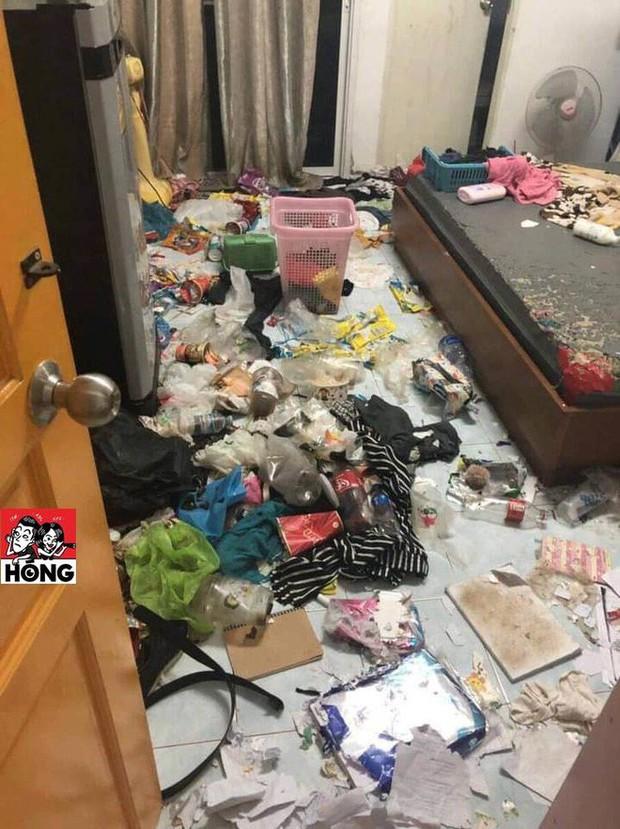 Xôn xao câu chuyện cô gái bùng tiền nhà trọ để lại căn phòng như bãi rác và 3 chú mèo ốm đói gây phẫn nộ - Ảnh 4.