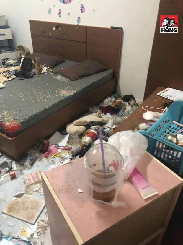 Xôn xao câu chuyện cô gái bùng tiền nhà trọ để lại căn phòng như bãi rác và 3 chú mèo ốm đói gây phẫn nộ - Ảnh 1.