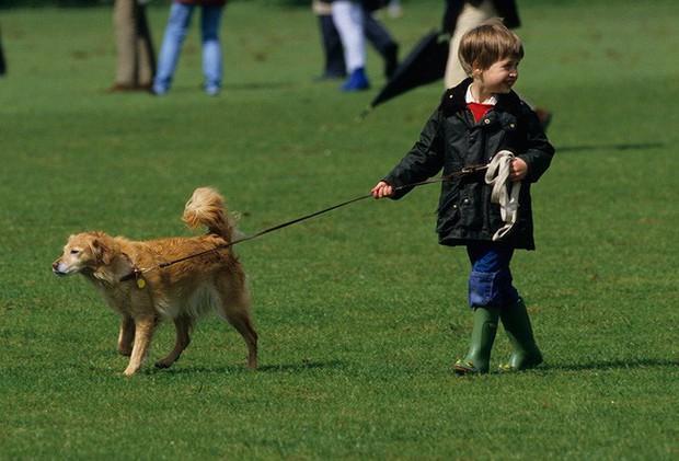 Ngược dòng thời gian để ngắm nhìn vẻ xinh xắn đáng yêu của các tiểu công chúa, tiểu hoàng tử Hoàng gia Anh ở tuổi lên 5 - Ảnh 13.