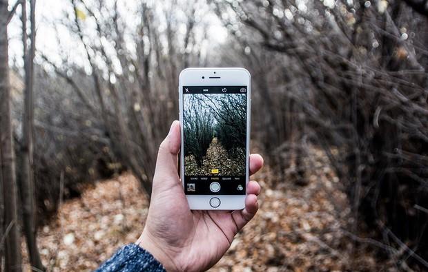 Chiêm ngưỡng tác phẩm ảo lòi từ iPhone 6 giật giải nhiếp ảnh, đánh bại cả loạt máy chuyên nghiệp - Ảnh 2.