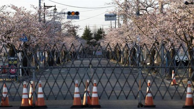 8 năm sau thảm họa hạt nhân, Fukushima hồi sinh đón người dân trở về - Ảnh 1.