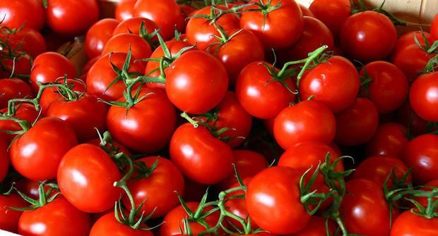 Tia UV sẽ không còn là nỗi lo nếu bạn chăm ăn thường xuyên 5 loại thực phẩm này trong mùa hè - Ảnh 1.