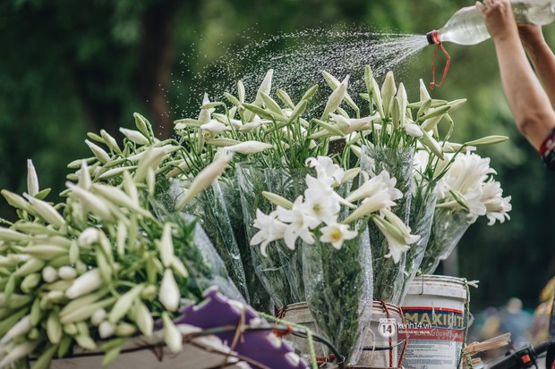 Hà Nội tháng 4: Hoa loa kèn nở e ấp trên phố, từng cánh trắng muốt và thoảng hương dịu ngọt - Ảnh 1.