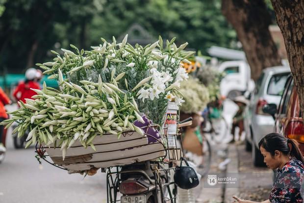 Hà Nội tháng 4: Hoa loa kèn nở e ấp trên phố, từng cánh trắng muốt và thoảng hương dịu ngọt - Ảnh 9.