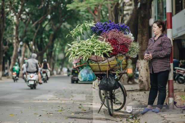Hà Nội tháng 4: Hoa loa kèn nở e ấp trên phố, từng cánh trắng muốt và thoảng hương dịu ngọt - Ảnh 10.