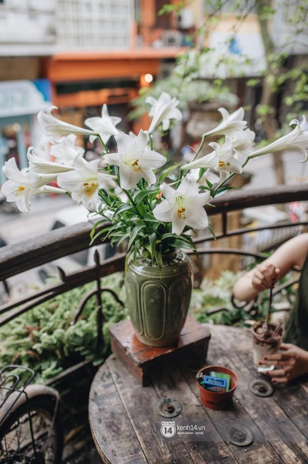 Hà Nội tháng 4: Hoa loa kèn nở e ấp trên phố, từng cánh trắng muốt và thoảng hương dịu ngọt - Ảnh 15.