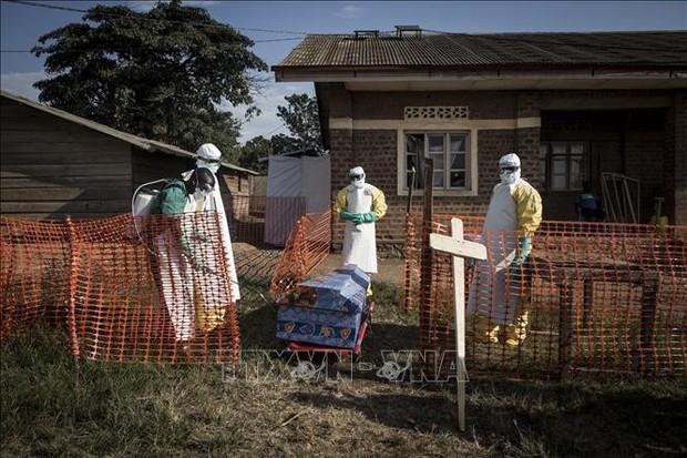 Trên 750 người đã tử vong vì dịch Ebola tại CHDC Congo - Ảnh 1.