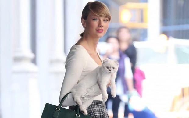 Vai diễn đầu tay chọn ngay hoàng thượng, Taylor Swift quả là con sen chính hiệu - Ảnh 1.