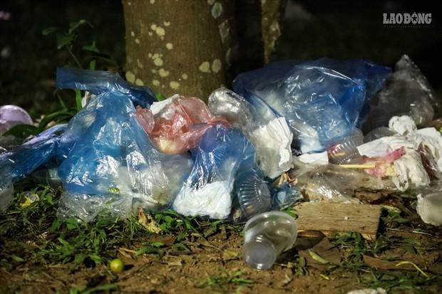 Sinh viên tình nguyện thâu đêm nhặt rác quanh khu vực Đền Hùng - Ảnh 4.
