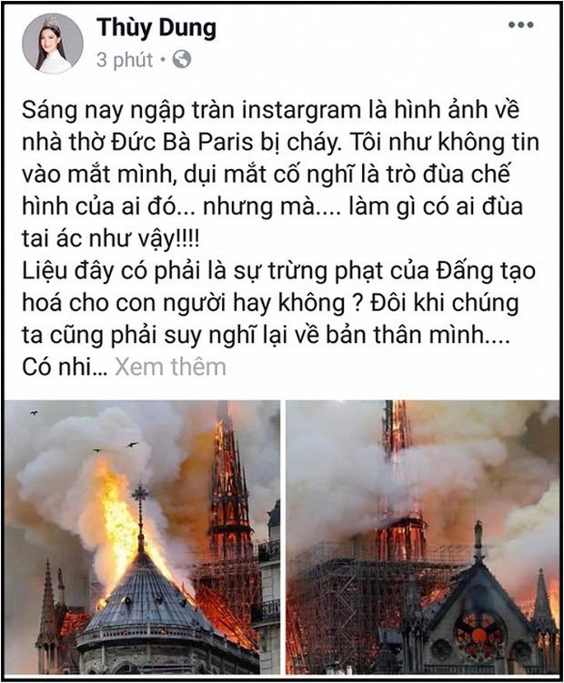 Sao Việt đau xót cầu nguyện trước cảnh tượng Nhà thờ Đức Bà Paris chìm trong biển lửa - Ảnh 10.