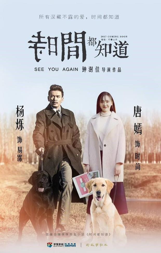 """Vì phốt ngoại tình của Dương Thước, đến 5 nữ diễn viên có nguy cơ """"nằm không cũng chịu thiệt"""" - Ảnh 1."""