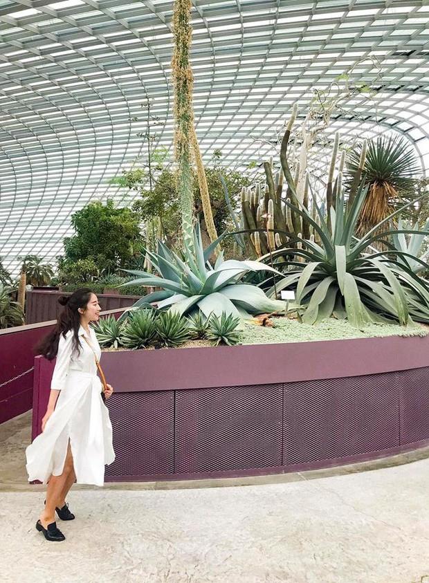 Đứng hình 5s với loạt background bảy sắc cầu vồng trong bộ ảnh du lịch Singapore của cô bạn người Việt xinh như hotgirl  - Ảnh 6.