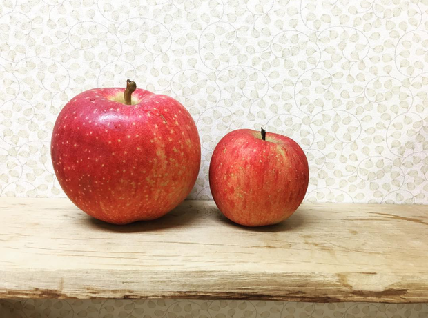 Nhật Bản có những loại trái cây thoạt nhìn thì cũng thường nhưng có giá cao bất ngờ - Ảnh 5.