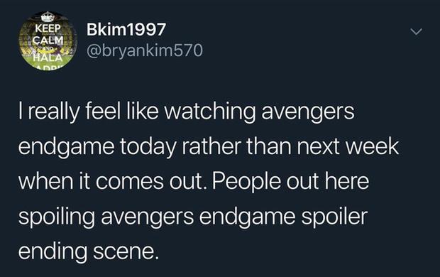Đây là lí do vì sao có fan Marvel sợ hãi đến mức khoá facebook, mua vé chợ đen Endgame - Ảnh 8.