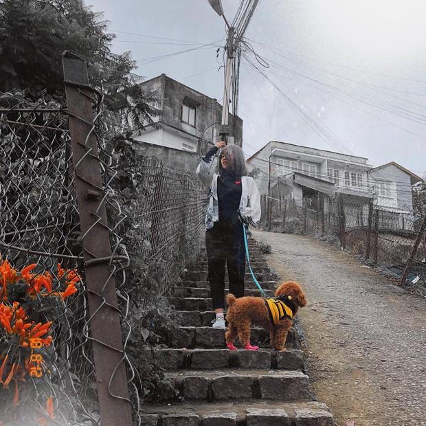 Con dốc nổi tiếng nhất Đà Lạt treo biển cấm quay phim chụp ảnh: Giới trẻ thở dài vì lại mất một điểm check-in đẹp! - Ảnh 9.