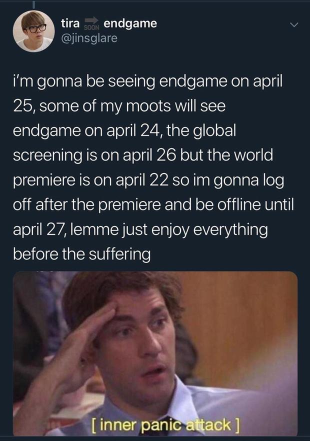 Đây là lí do vì sao có fan Marvel sợ hãi đến mức khoá facebook, mua vé chợ đen Endgame - Ảnh 9.