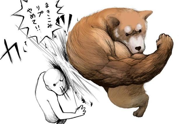 Khoảnh khắc chú chó Shiba quay đầu tung nắm đấm không trượt phát nào như Saitama bất ngờ gây sốt trên MXH - Ảnh 2.