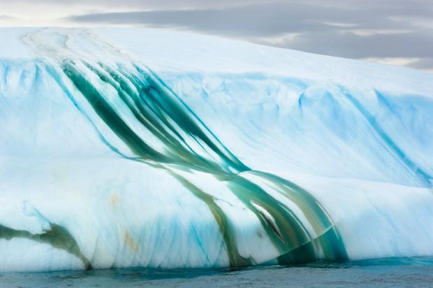Cực độc tảng băng ngọc lục bảo tuyệt mỹ ở Nam Cực: Phải may mắn lắm mới có thể bắt gặp khoảnh khắc này! - Ảnh 8.