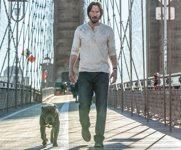 5 bộ phim về những chú boss mà ai xem xong cũng muốn đầu thai làm... cún - Ảnh 4.