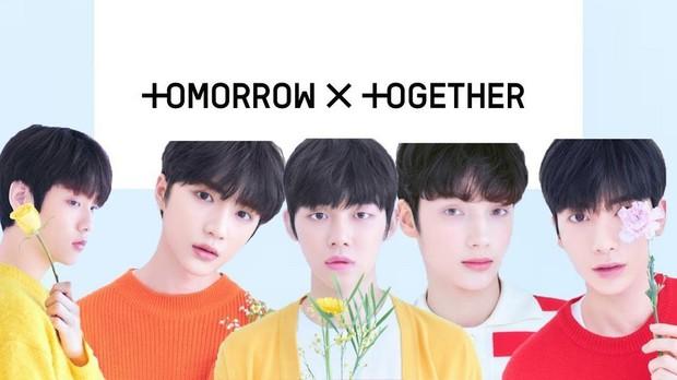 BXH khủng nhất xứ Hàn: BTS và Big Hit đẩy YG khỏi BIG3, vợ chồng Song Song vượt mặt mợ chảnh - Ảnh 20.