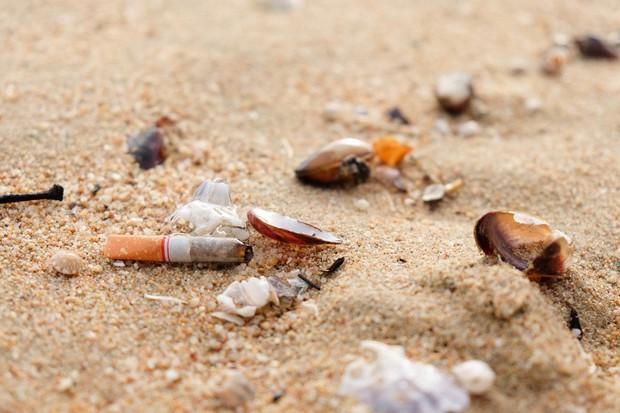Đây là hòn đảo không thuốc lá đầu tiên trên thế giới và hãy xem môi trường đã cảm ơn nó như thế nào - Ảnh 1.