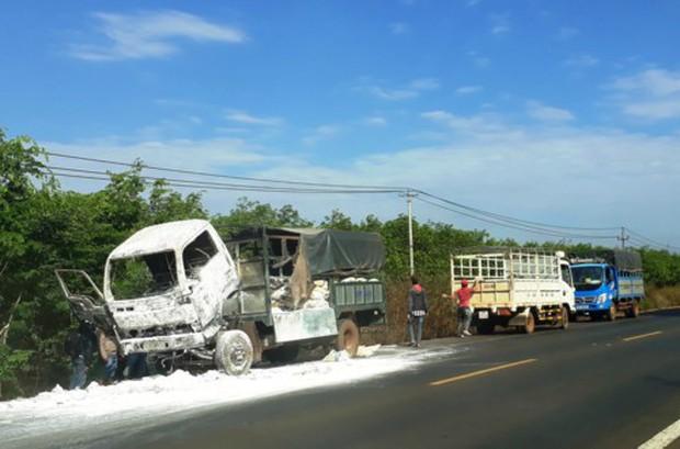 Gia Lai: Xe tải bốc cháy dữ dội trong lúc tài xế đi vệ sinh - Ảnh 1.