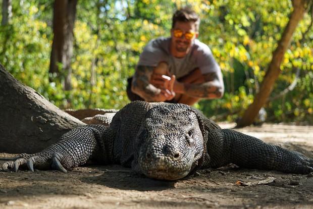 Đảo rồng Komodo tại Indonesia sẽ đóng cửa vào năm 2020, đi ngay trước khi quá muộn nào! - Ảnh 3.