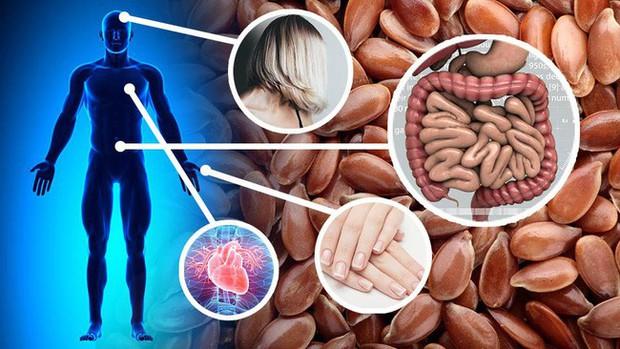 8 điều có thể xảy ra với cơ thể nếu bạn đều đặn ăn hạt lanh mỗi ngày - Ảnh 1.