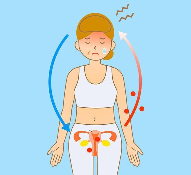 8 điều có thể xảy ra với cơ thể nếu bạn đều đặn ăn hạt lanh mỗi ngày - Ảnh 7.