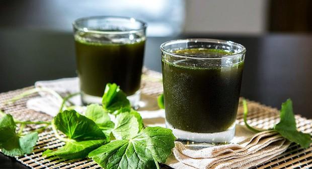 Giải nhiệt ngày nắng nóng cùng những gợi ý thực phẩm chữa bệnh từ chuyên gia Đông y - Ảnh 4.
