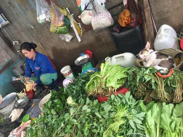 Boss chó lăn quay ra ngủ ngon lành giữa chợ: Cuối tuần nắng nóng thì chỉ ngủ thôi chứ buôn bán gì tầm này! - Ảnh 1.